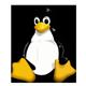 Linux Servers